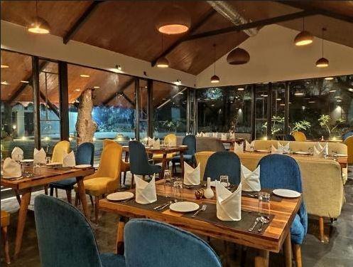IPL live streaming | Udaipur restaurants