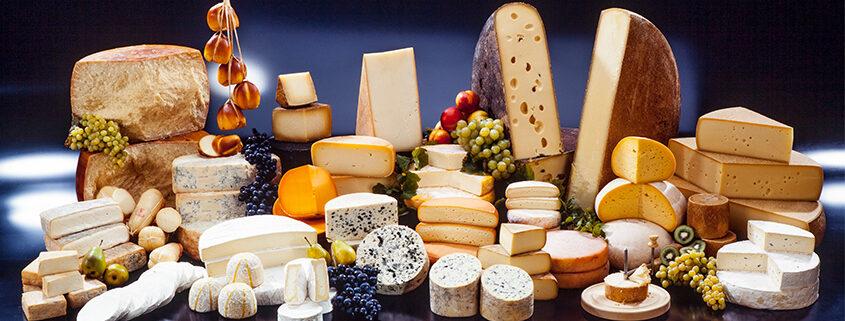 cheese trivia